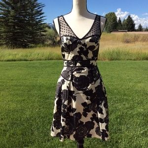 Milly of NY Black & Cream Rose Print Dress-Sz10  4
